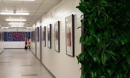 Earnscliffe Senior Public School Hallway Revamp